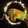 Цирки в Таганроге
